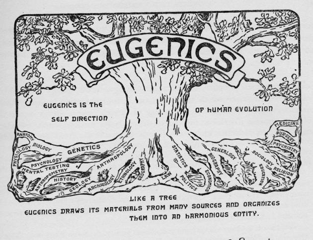 eugenics_tree_1921