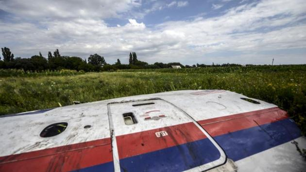 mh17-crash-afp